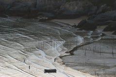 Sonnenaufgang von Infertidal Mudflat von Xiapu Lizenzfreie Stockfotos