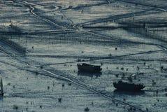 Sonnenaufgang von Infertidal Mudflat von Xiapu Lizenzfreies Stockfoto