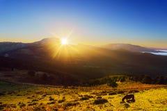 Sonnenaufgang von Saibi mit Ansicht von Amboto-Berg und von Pferd Stockfotos
