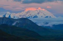 Sonnenaufgangansicht des Bergs Denali - Spitze mt McKinley mit rotem alpenglow von der steinigen Haube übersehen Nationalpark Den lizenzfreies stockfoto