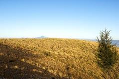 Sonnenaufgangberge kultivierten mit malerischen D?rfern in l?ndlichen Guatemala, im Nebel und im Frost Zentralamerika lizenzfreie stockfotografie