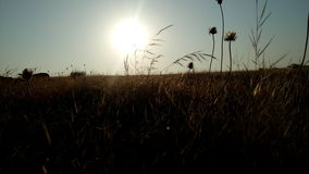 Sonnenaufgangbild Stockbild