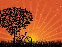 Sonnenaufganglandschaft mit einem Fahrrad Stockfotos