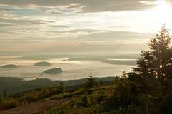Sonnenaufganglandschaft von See und von Pelzbaumwald Lizenzfreie Stockfotos