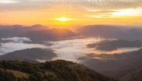 Sonnenaufganglicht und -nebel Stockbilder