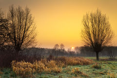 Sonnenaufgangnatur Lizenzfreie Stockfotos