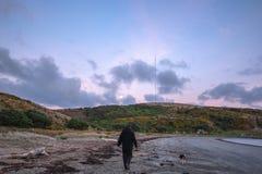 Sonnenaufgangweg auf Strand mit Hund stockfoto