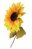 Sonnenblume 2 Stock Abbildung