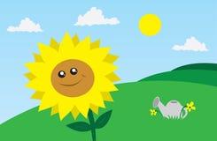 Sonnenblume auf dem Gebiet lizenzfreie abbildung