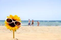 Sonnenblume auf dem Strand stockfoto