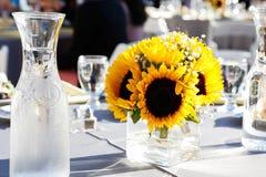 Sonnenblume auf einem Speisetische Stockbilder