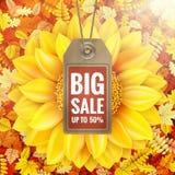Sonnenblume auf Herbstlaub mit Verkaufstag ENV 10 Lizenzfreies Stockfoto