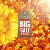 Sonnenblume auf Herbstlaub mit Verkaufstag ENV 10 Stockfotografie