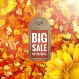 Sonnenblume auf Herbstlaub mit Verkaufstag ENV 10 Lizenzfreie Stockfotos