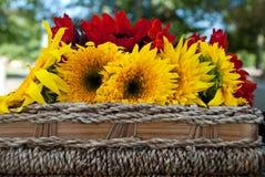 Sonnenblume auf Picknick-Korb Stockbilder