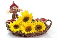 Sonnenblume-Dekoration Stockbild