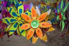 Sonnenblume, die auf den weißen und Grünbüchern macht Stockfoto