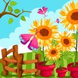 Sonnenblume in einem Potenziometer mit Basisrecheneinheit Stockfotos
