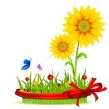 Sonnenblume im Gras Stockbild