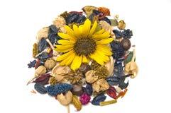 Sonnenblume mit Dekorationen Stockbild
