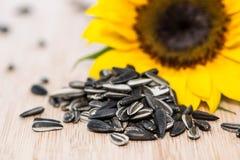 Sonnenblume mit Samen auf Holz Stockbild