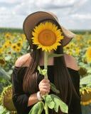 Sonnenblume Sonntag stockfoto