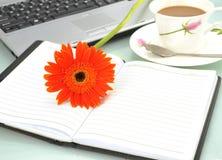 Sonnenblume und Notizbuch lizenzfreies stockfoto