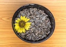 Sonnenblume und Samen Lizenzfreies Stockfoto