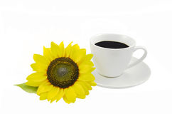 Sonnenblume und Tasse Kaffee Stockfoto