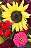 Sonnenblume und Zinnias in einem Blumenstrauß stockfotografie