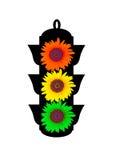 Sonnenblume-Verkehr Leuchte Lizenzfreies Stockbild