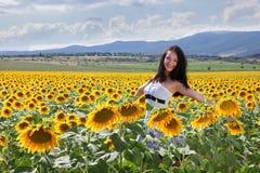 Sonnenblumefeld in Bulgarien Lizenzfreies Stockbild