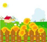 Sonnenblumefelder und ein Bauernhof. vektor abbildung