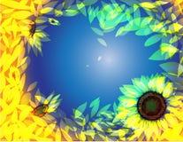 Sonnenblumehintergrund lizenzfreie abbildung