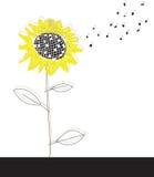 Sonnenblumehintergrund Lizenzfreie Stockbilder