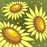 Sonnenblumehintergrund Stockbilder