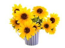 Sonnenblumen in einem gestreiften Becher Stockfoto