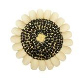 Sonnenblumen in Form von Salat Stockbilder