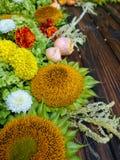 Sonnenblumen mit Beeren und Anlagen auf einem hölzernen Hintergrund Stockbilder