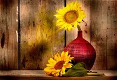 Sonnenblumen mit und alter hölzerner Plankenhintergrund Stockfoto