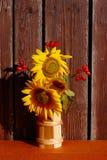 Sonnenblumen-Stillleben auf hölzernem Hintergrund Stockbild
