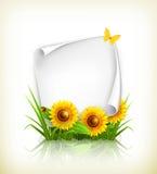 Sonnenblumen und Papier Stockfoto