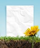 Sonnenblumen und Papierfeld Lizenzfreie Stockfotografie