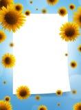Sonnenblumen und Papierfeld Lizenzfreie Stockbilder