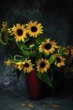 Sonnenblumen und roter Vase Lizenzfreie Stockfotografie