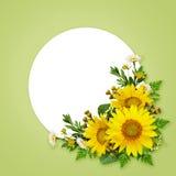 Sonnenblumen und wilde Blumen und ein Platz für Text Lizenzfreies Stockbild