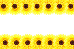 Sonnenblumenrahmen Lizenzfreie Stockfotos