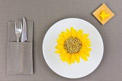Sonnenblumensamen auf der Platte Lizenzfreies Stockfoto