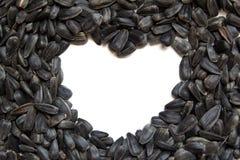 Sonnenblumensamen - Herzform Lizenzfreie Stockbilder