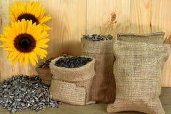 Sonnenblumensamen, Leinensäcke, Sonnenblumenblüte, Holztisch Stockbild